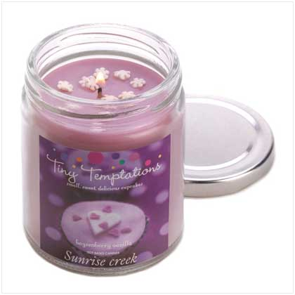 Candles Scents Michaels World of Products